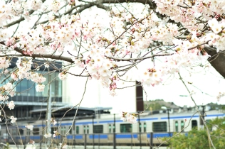 JR双葉駅